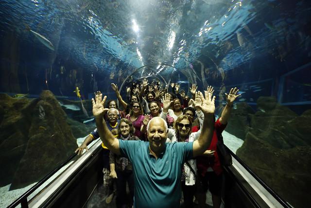 Os idosos visitaram o AquaRio pela primeira vez