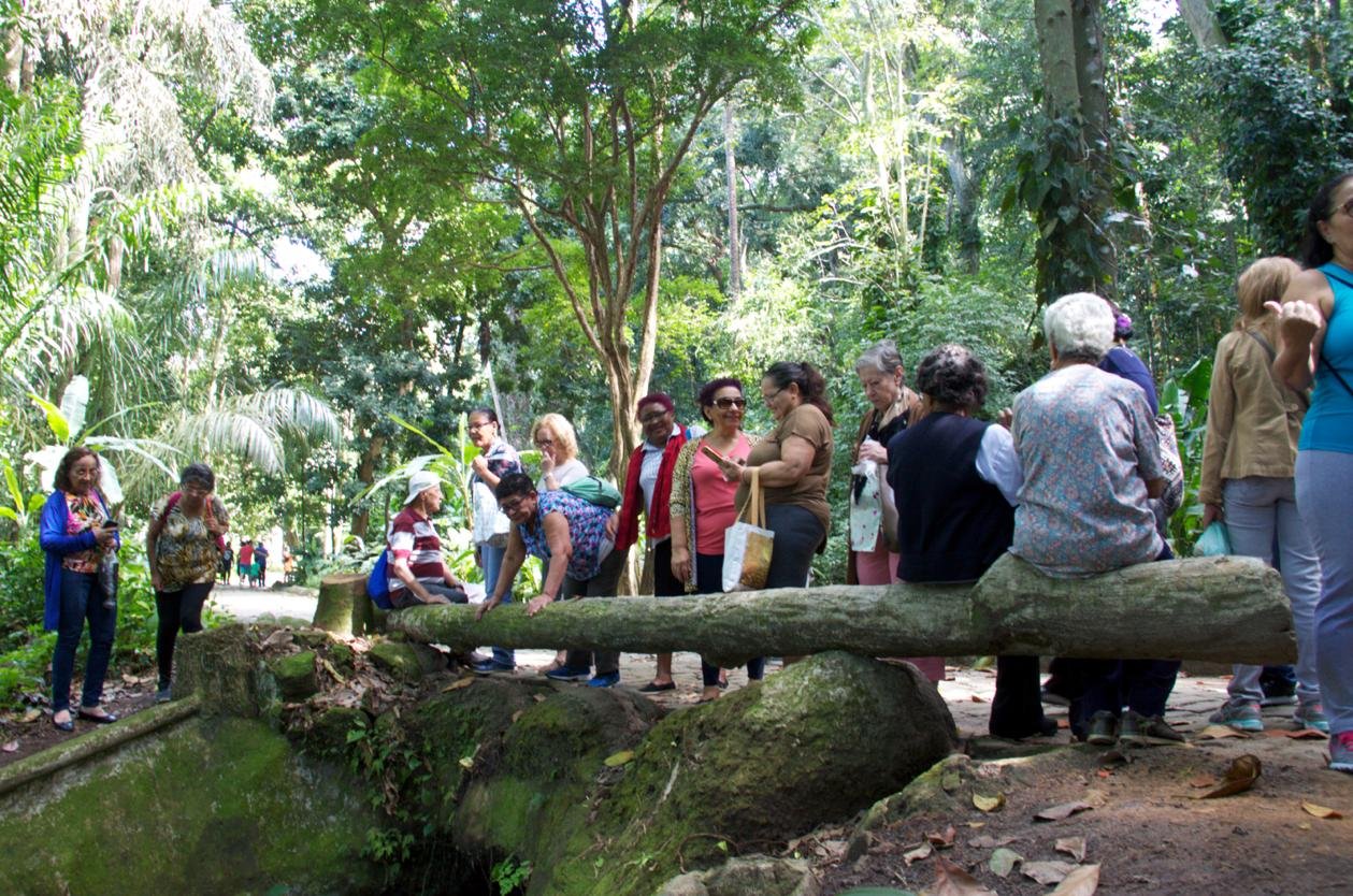 Idosos de Casa de Convivência em São Conrado visitam o Parque Lage. Muitos nunca tinham estado no lugar. Foto: Débora Reis / divulgação