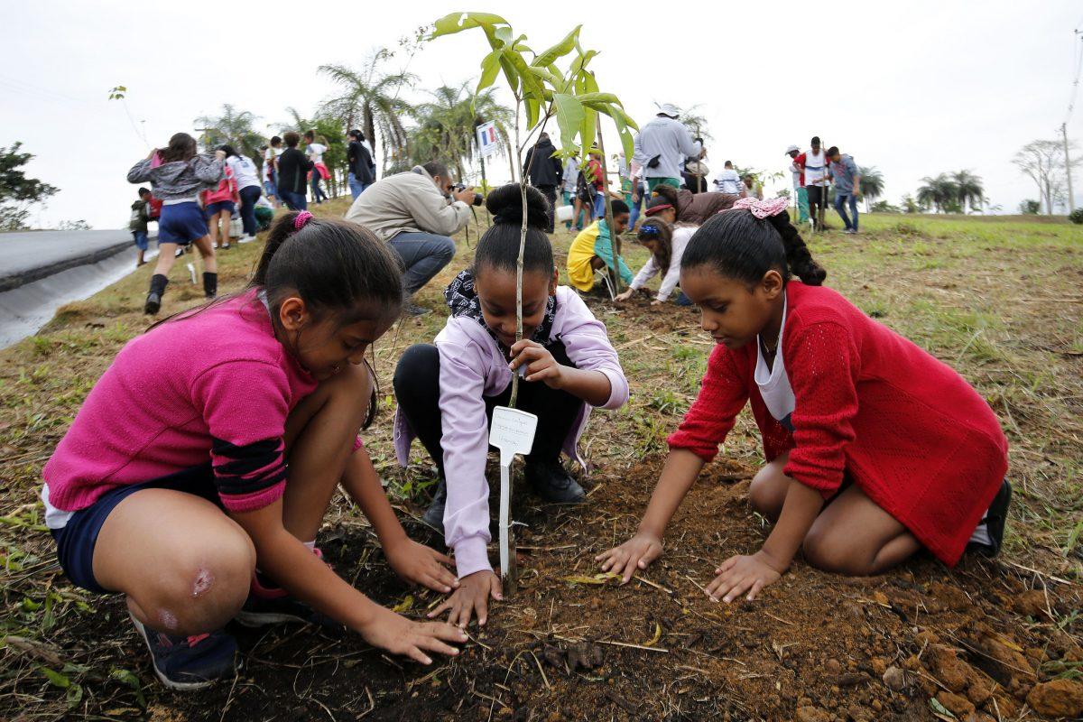 Estudantes da rede municipal do Rio ajudam a plantar. mudas na Floresta dos Atletas. Foto: Marcos de Paula/Prefeitura do Rio