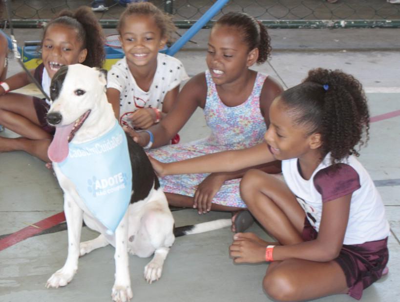 Prefeitura do Rio inicia projeto educacional sobre maus-tratos e abandono animal nas escolas