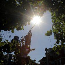 Cuidar da Cidade na Praia da Bandeira, Ilha do Governador: poda de árvore foi o pedido mais frequente dos moradores ao 1746. Foto: Marcos de Paula / Prefeitura do Rio