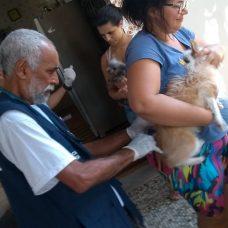 Técnico da Vigilância Sanitária e Controle de Zoonoses municipal aplica vacina contra raiva em cão na Ilha do Governador. Foto: divulgação