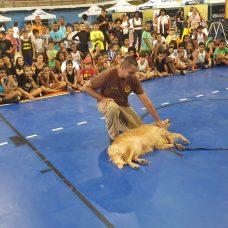 Caravana Carioca de Férias agita Campo Grande com atividades para crianças e responsáveis