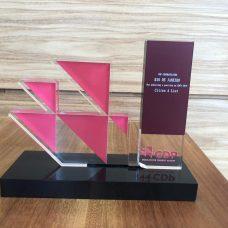 Troféu de reconhecimento como líder global em ações e transparência climática ganho pela Prefeitura do Rio. Foto: Divulgação