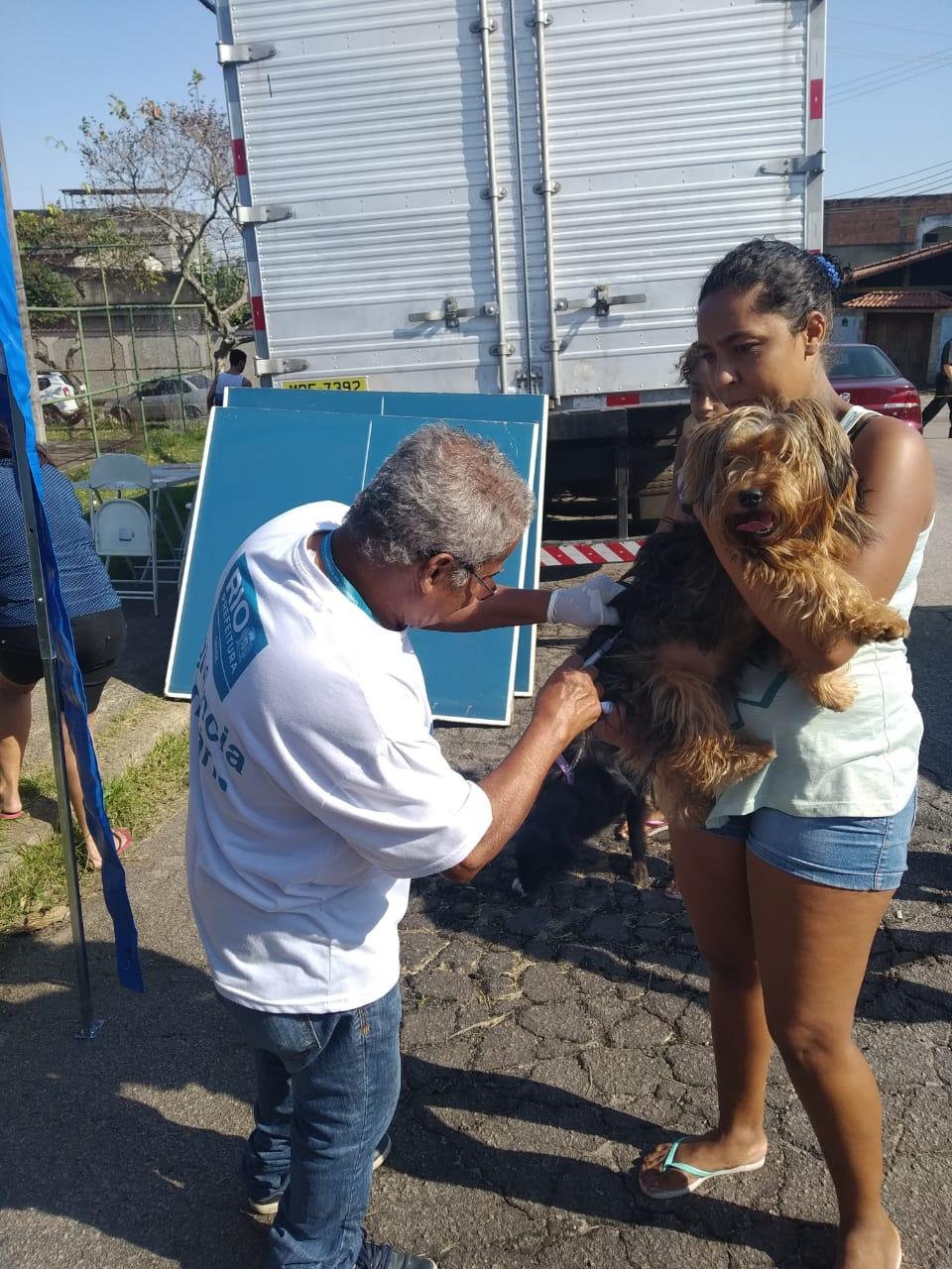 Cães e gatos são vacinados em Campo Grande e em Cordovil