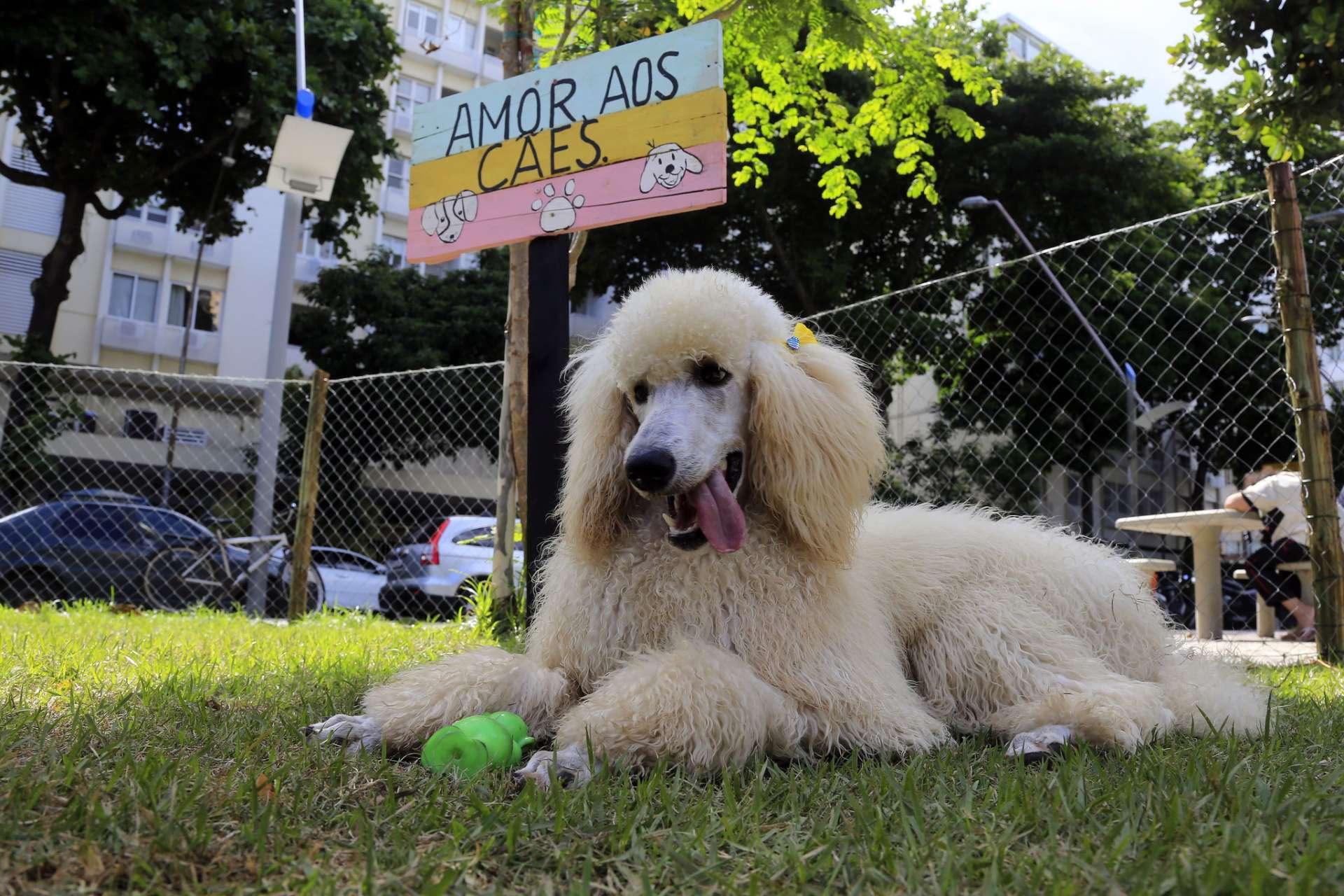 Teresa, de 8 meses, descansa no Parcão inaugurado no Leblon. Foto: Marcos de Paula / Prefeitura do Rio